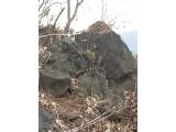 철원현장에서작업중인현무암자연석