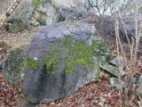 국내산이끼석